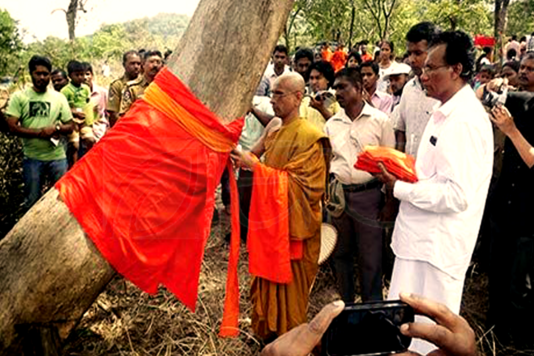 Tree Ordination in Nilgala forest