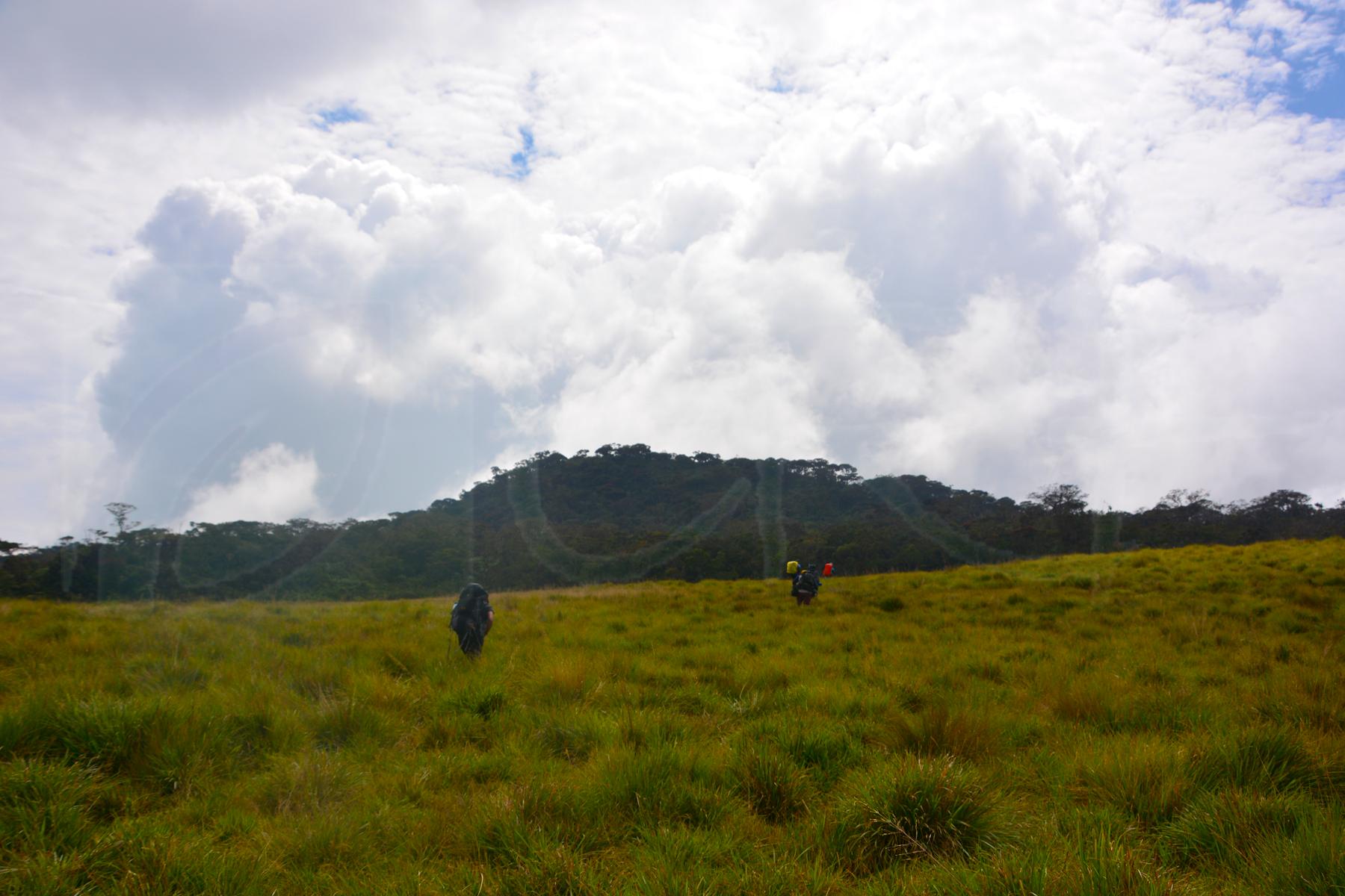 Wet Pathana Ecosystems in Sri Lanka