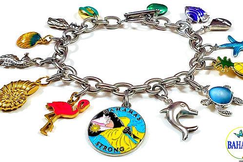 Stainless Steel Charm Bracelet.