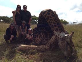 Giraffe2 - Copy.jpg