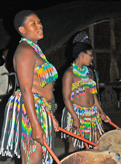 Ladies Zulu