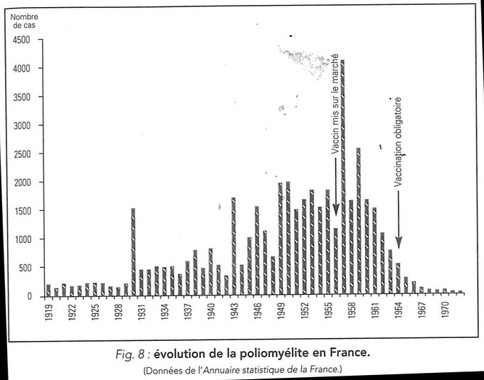 poliomyélite.jpg