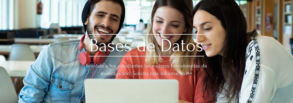 Bases de Datos WP (2).png