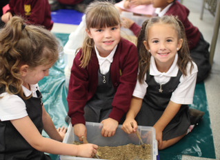 Year 1 become Palaeontologists