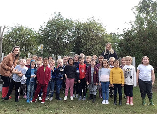 Year 2 - Outdoor Learning