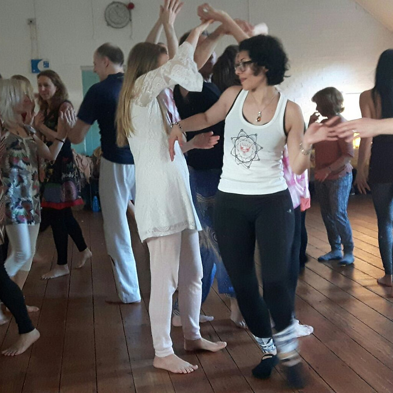 High Needs Vitaldanza Taster Session at Henfield Haven
