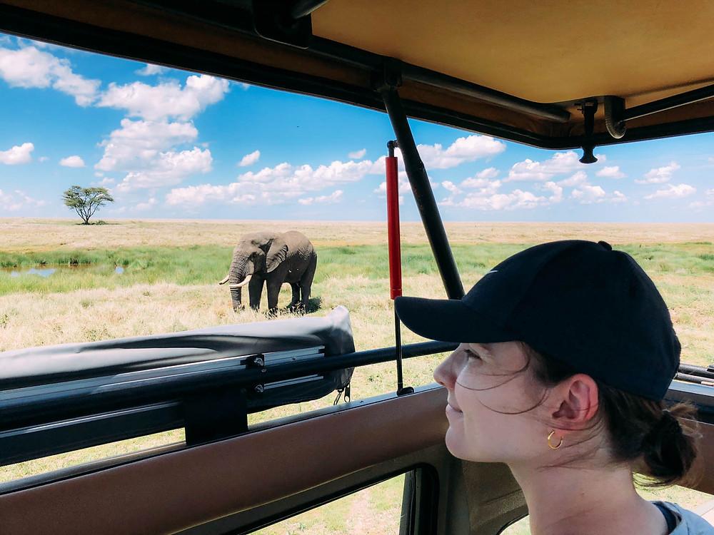 A lone elephant enjoying a mid-plain drink in Serengeti