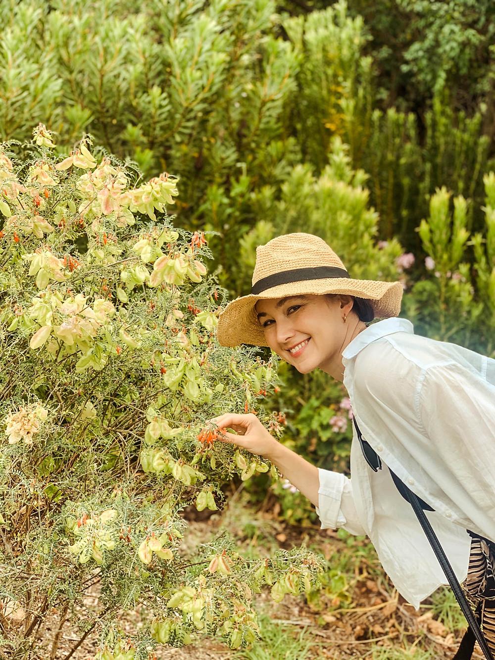 Our resident botanist in Kirstenbosch