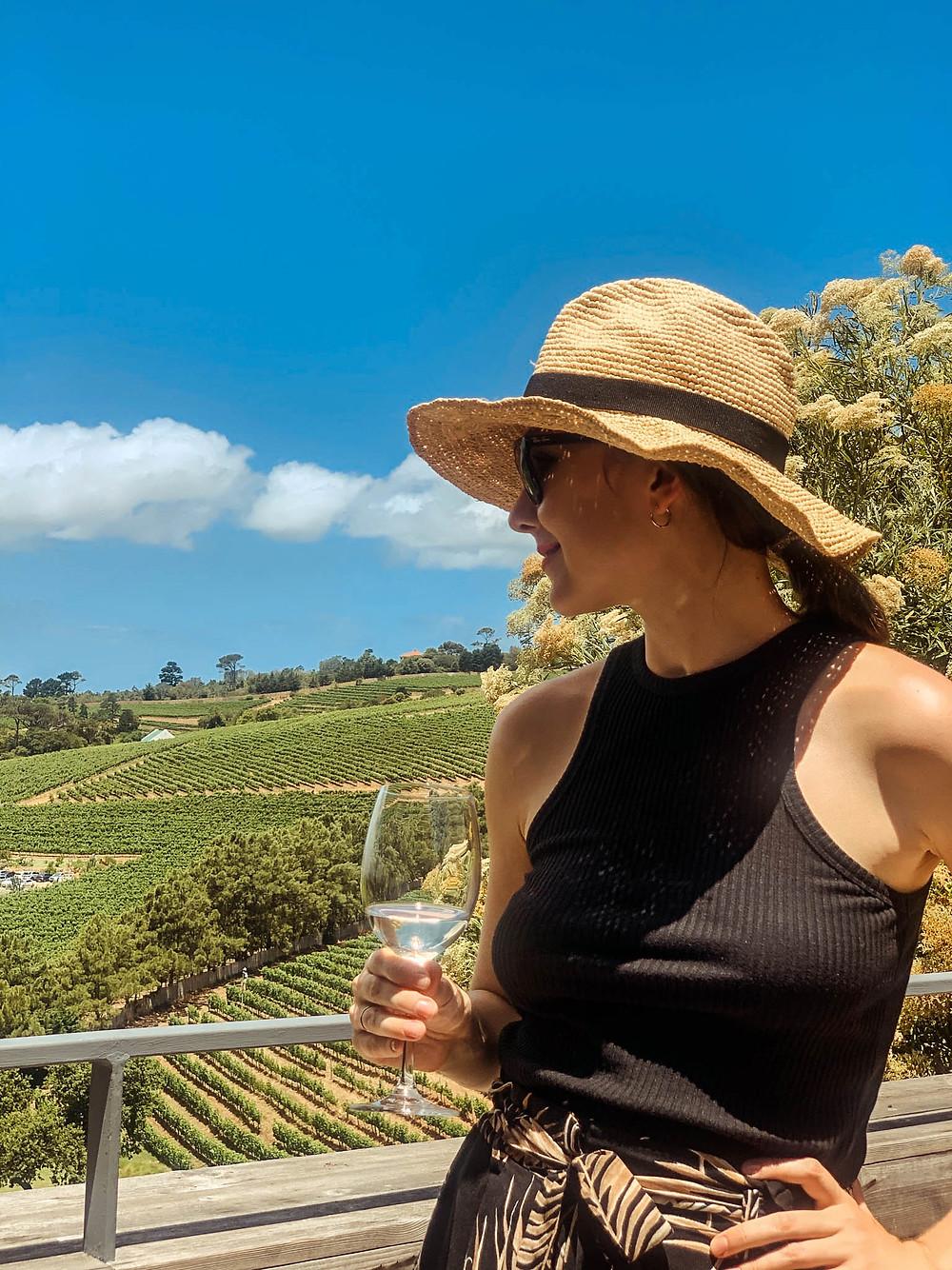 Wine tasting in Constantia