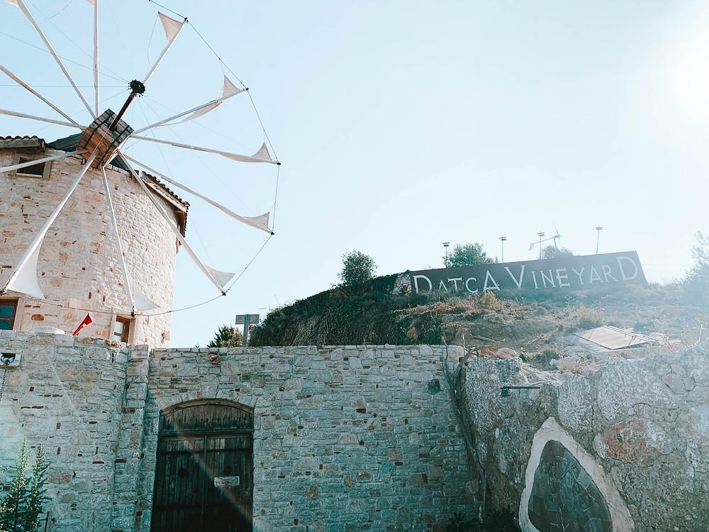 Datca Vineyard's famous windmill