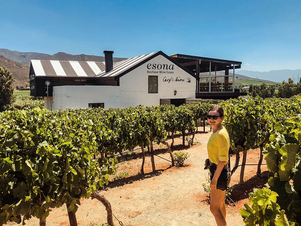 A wine stop in South Africa's Robertson Valley
