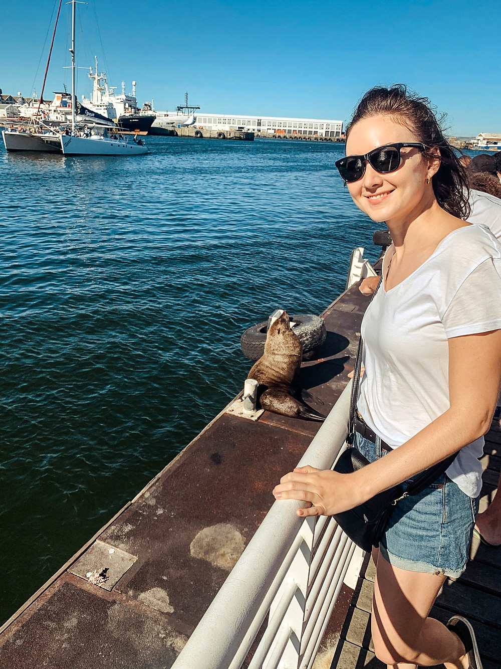 Waiting to board the ferry to Robben Island with some of the local seals