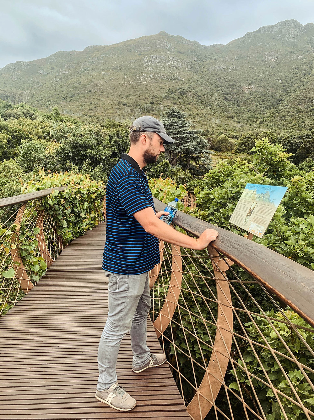 The incredible Kirstenbosch Gardens - in the shadow of Table Mountain