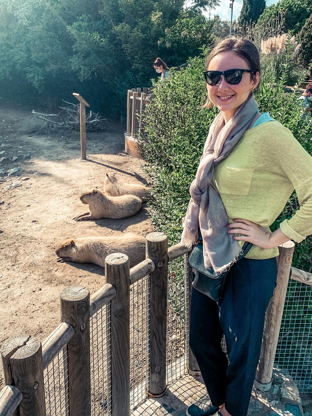 Jenna's new favorites - capybaras!
