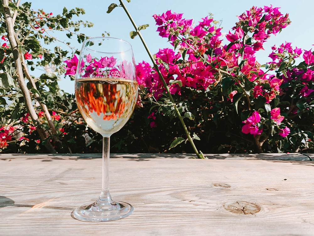 Pretty wine and flower pictures...
