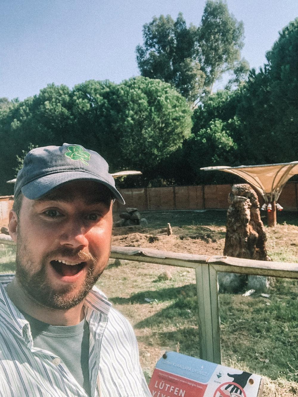 Chipp and his meerkat friends at the Izmir Wildlife Park