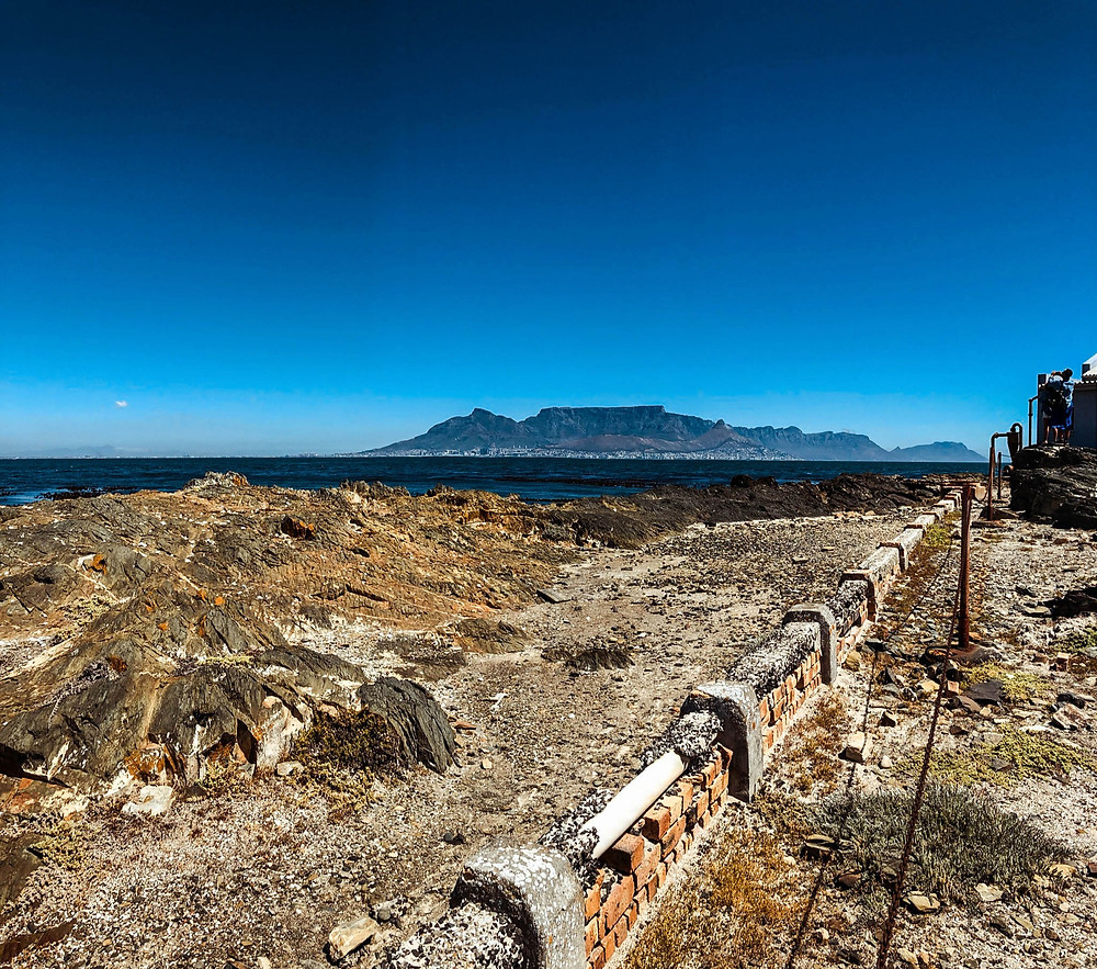 On the shores of Robben Island - Cape Town across Table Bay in the distance