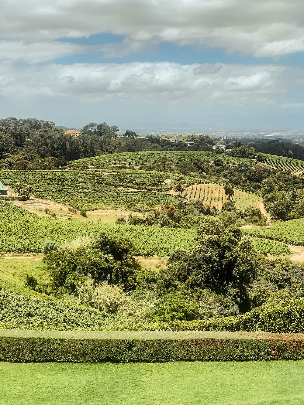 Constantia - Cape Town wine country 15 minutes from downtown!