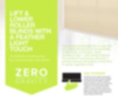 zero gravity flyer 1.jpg