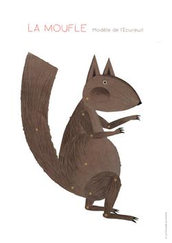 Écureuil modèle