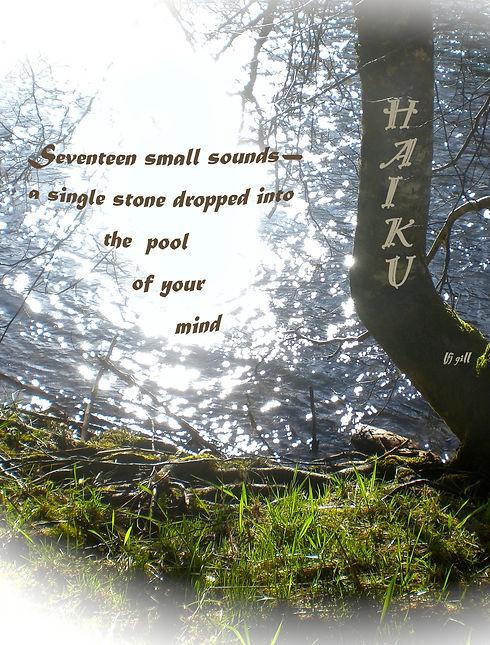 Seventeen small sounds cropt 12-30-20.jp