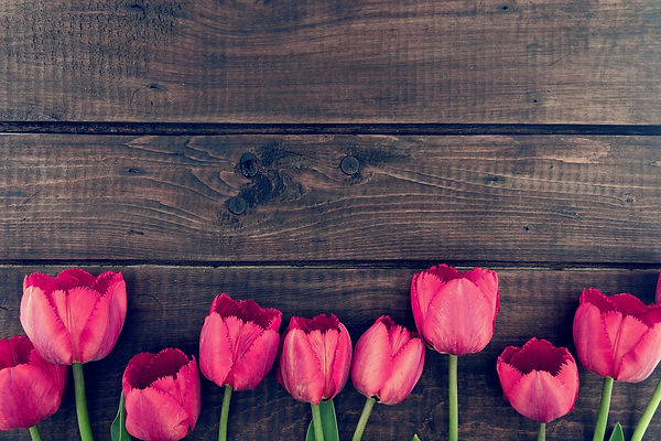 Row of tulips on wooden background with