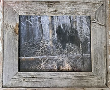 Woodland Spirit with Frame.jpg