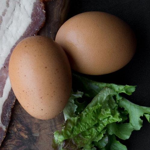 Farm Fresh Eggs / 1 Dozen