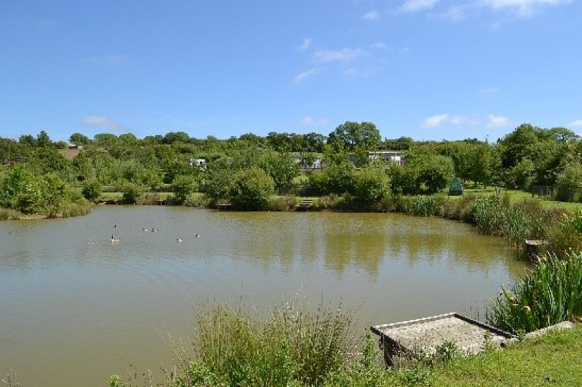 fishing lake - copy