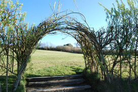 Arch to top field