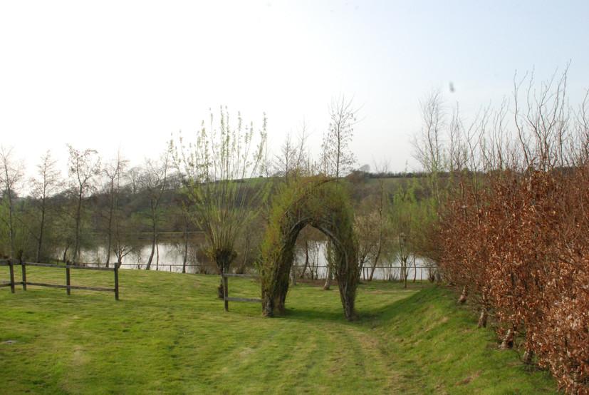 Arch by Foxglove