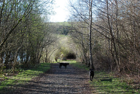 Path tp Lakes