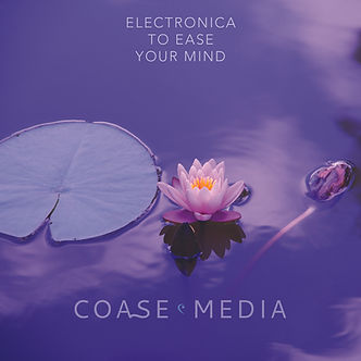 Electronica To Ease Your Mind.jpg