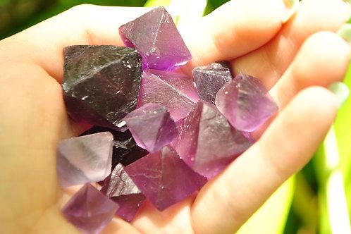 Violet Fluorite Octahedrons | Pisces | Crystal Healing