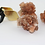 Thumbnail: One Small Aragonite Cluster