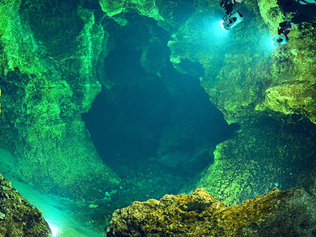 Vacation to Ginnie Springs in Florida