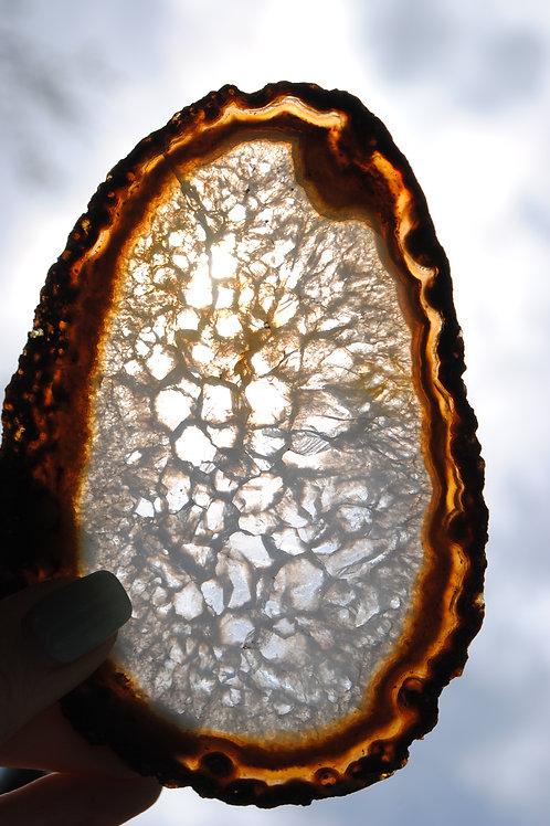 Agate Slab | Orange Slice | Chakra | Orange | Translucent