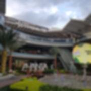 Palmas en centro comercial