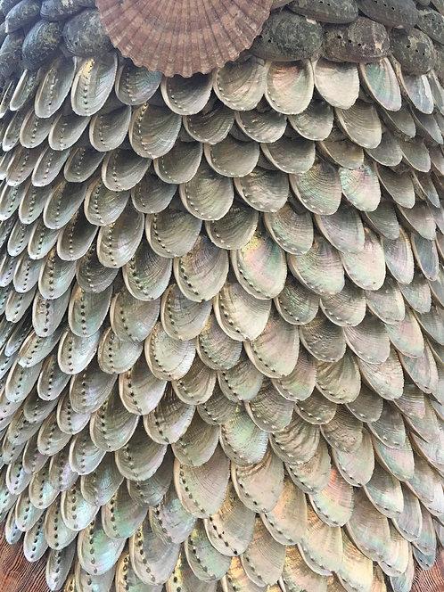 Blott Shell Cone