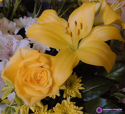 Yellow Rose and Lily.jpg