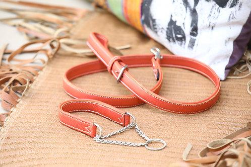 Laisse et collier martingale pour chien
