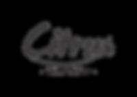 Citrus-Delivery-Logo.png