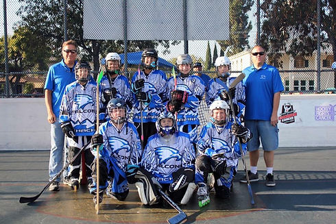 Home | Tehachapi Mountain Roller Hockey