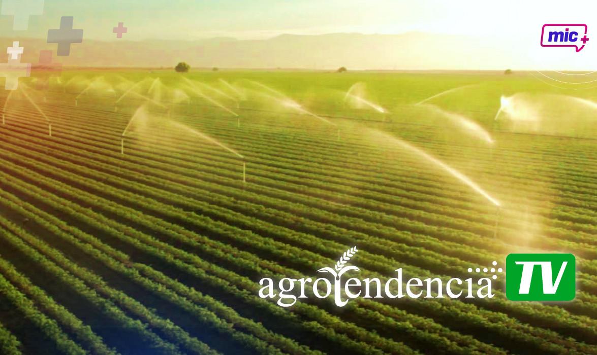 Agrotendencia pag internas-01.jpg