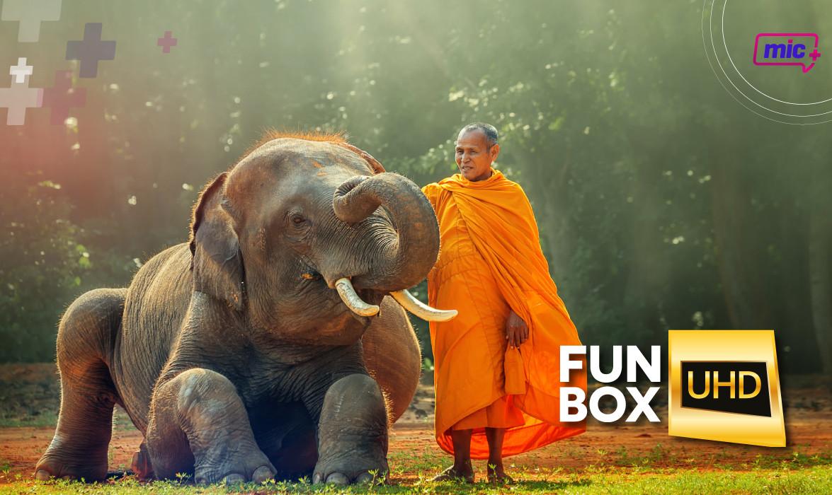Fun Box UHD pag internas-02.jpg