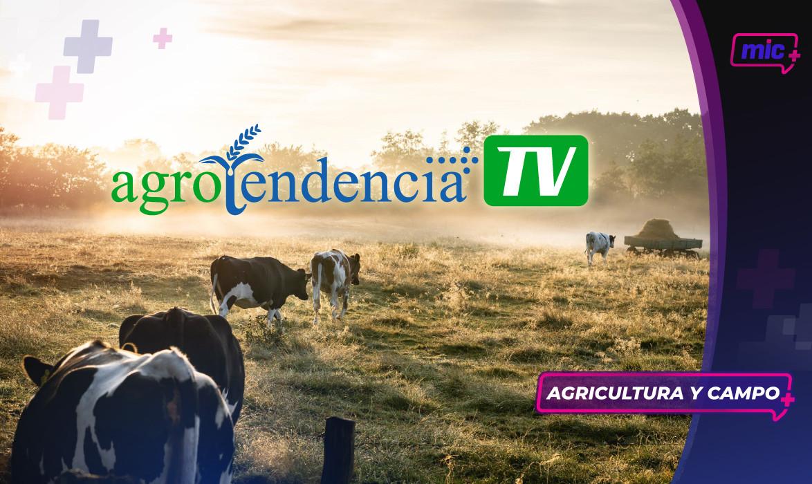 35 Agrotendencia Portada.jpg