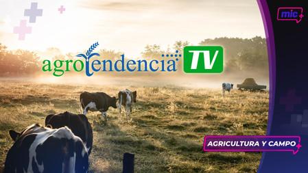 AgroTendencia TV