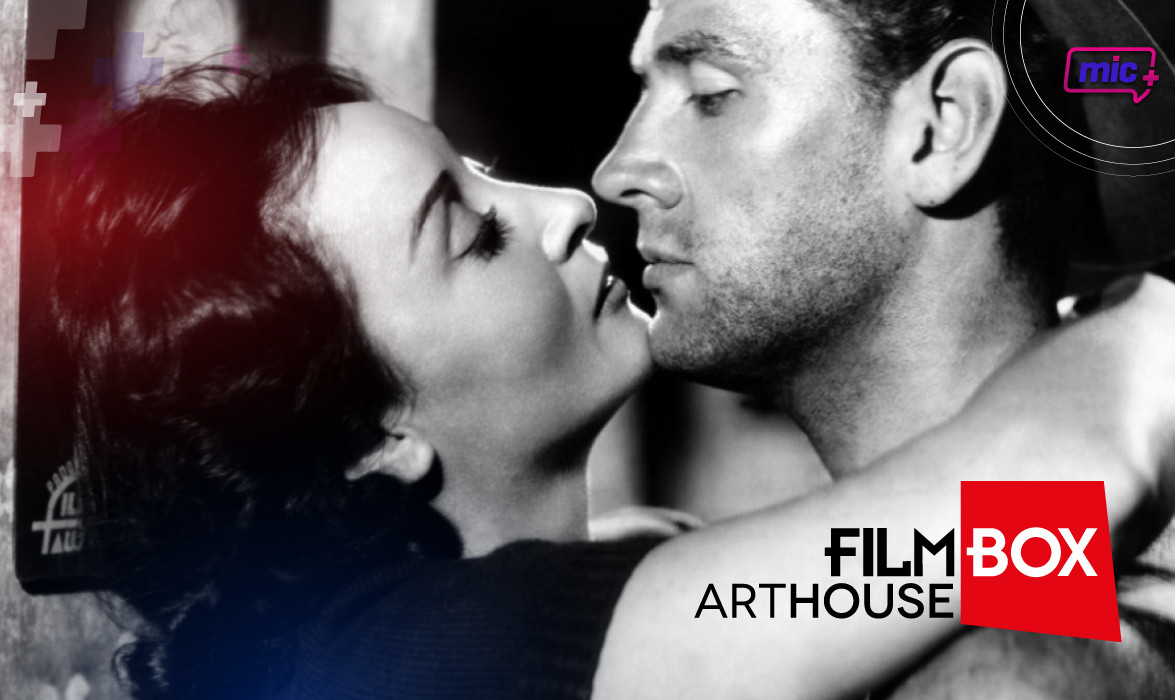 Film Box ArtHouse pag internas-03.jpg