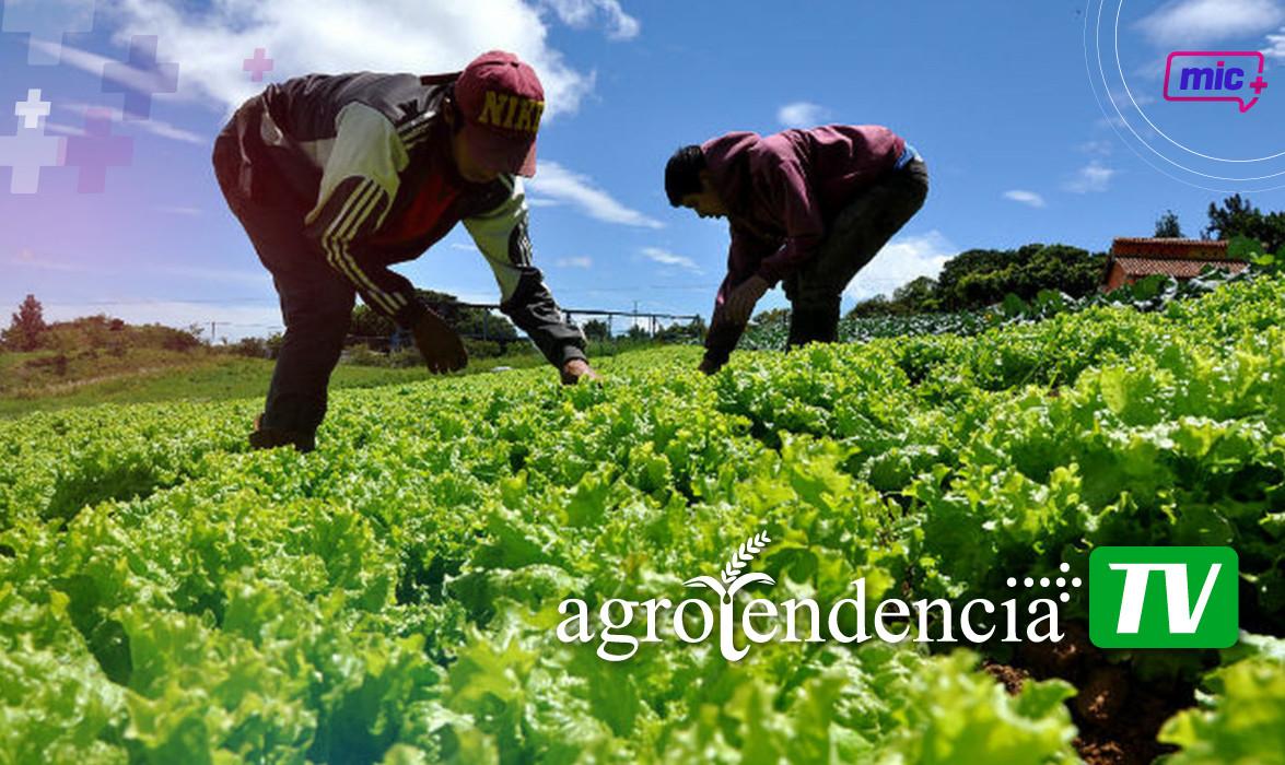 Agrotendencia pag internas-04.jpg
