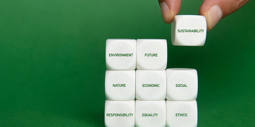 Sustainability Workstream